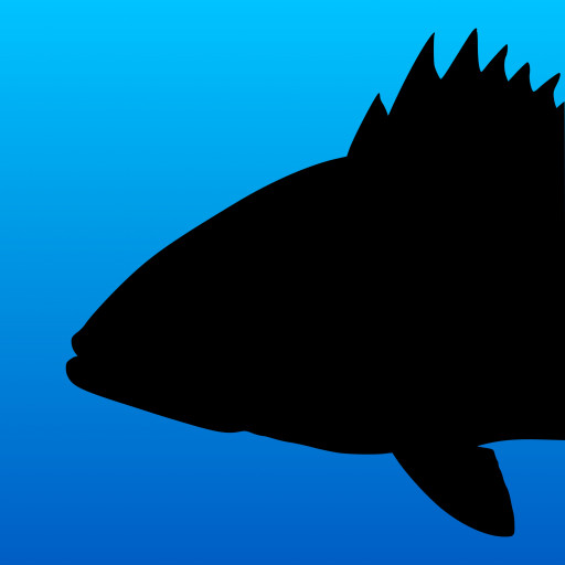 Fish Rules Announces New, Updated App