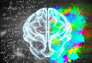 Breakthrough Brain Science