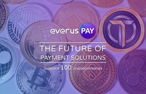 EverusPay - the Future of Payment Solutions
