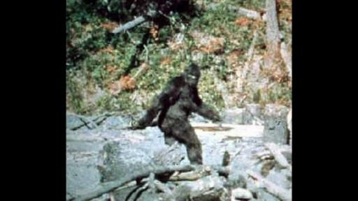 Bigfoot Finally Proved False