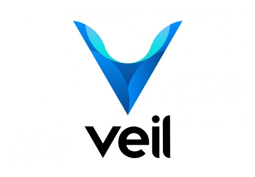 The Veil Project Cutting Edge Privacy Coin Launched Its MainNet