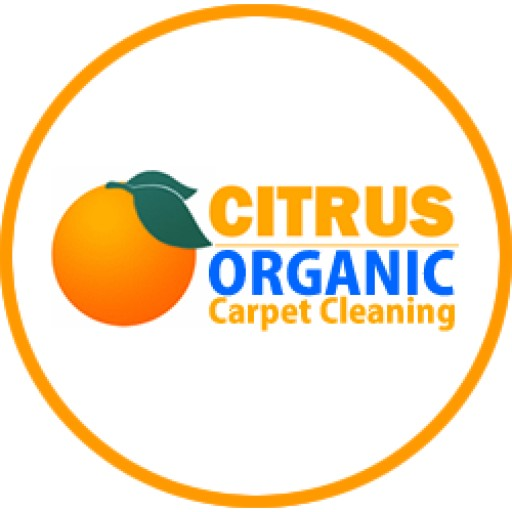 A Professional Carpet Cleaning In Encino, CA