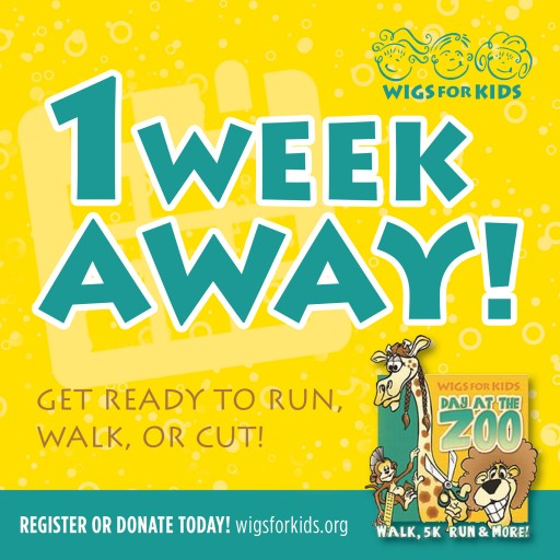 Wigs for Kids Day at the Zoo 5K Run + 1M Fun Walk Pre-Registration Ending