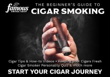 Cigars for Beginners Guide