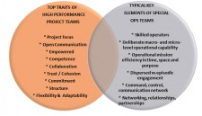 Building High Performance Project Teams for 21st Century