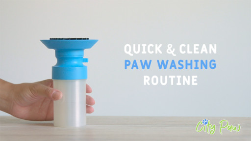 Keep Dog's Paws Clean in the Most Effective and Efficient Way Possible With an Amazing New Tool Created by Bay Area Pit-Bull Doggy Parent.