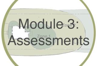 Module 3: Assessments