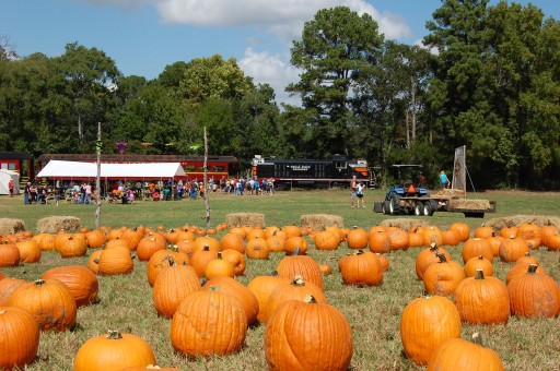 Texas State Railroad's 'Pumpkin Patch'