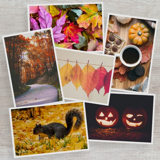 The Gallery Collection Announces 2020 Colors of Autumn Photo Contest