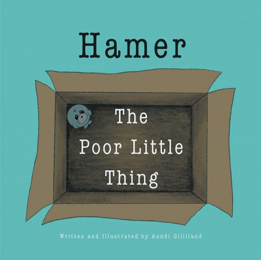 Aundi Gilliland's New Book 'Hamer: The Poor Little Thing' is a Heartwarming Tale of an Unwanted Toy's Journey in Finding the Perfect Companion to Play With