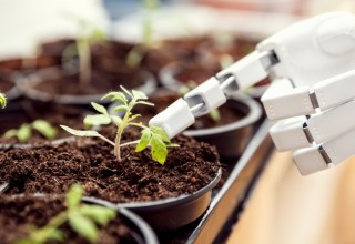A robot can grow Marijuana for you from seed to harvest!
