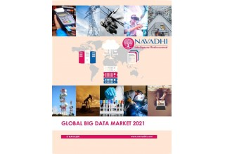 Global Big Data Market 2021 Market Research Report