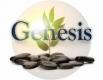 Genesis Ibogaine Center