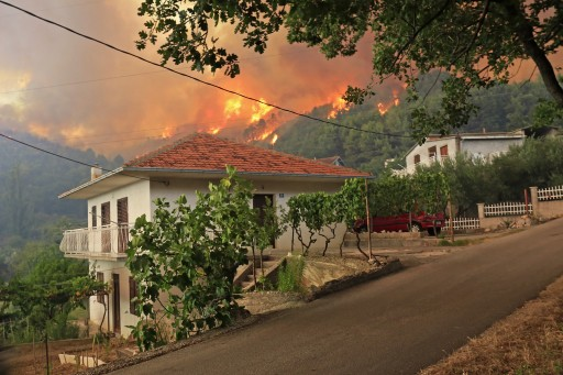 Mary Alexander & Associates Investigating Northern California Wildfire Liability