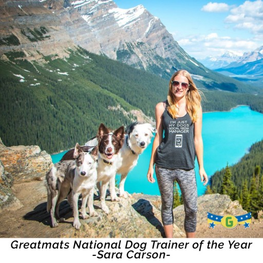 Sara Carson Wins National Dog Trainer of the Year Honor