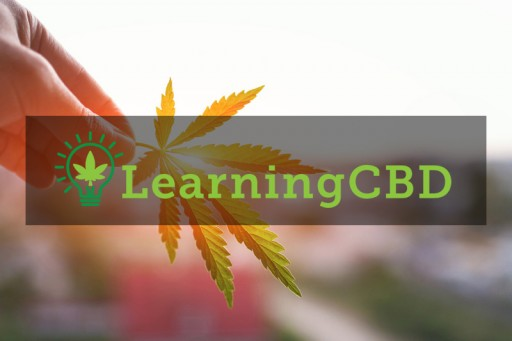 Comprehensive Report Details How Long CBD Oil Takes to Work