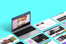 Ricky Zollinger Media Website