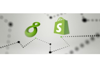 NS8 and Shopify Logos Design