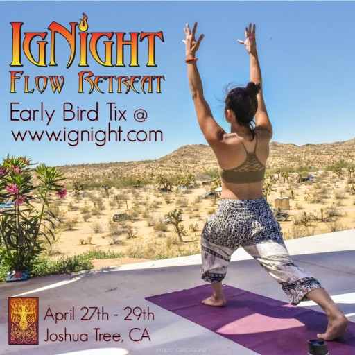 IgNight Healing of Mind, Body and Spirit - a Transformational Event With Over 200-Plus Flow Arts Classes