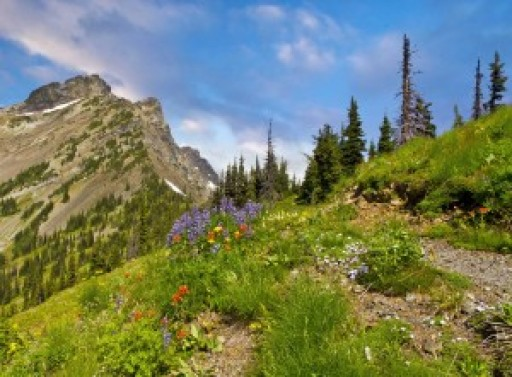 4-Day Introductory Meditation Retreat in Utah's Beautiful Powder Mountain Resort May 1 - May 4