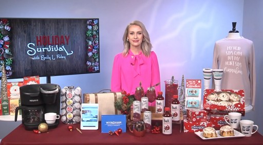 Holiday Survival Tips With Emily Foley on Tips on TV Blog