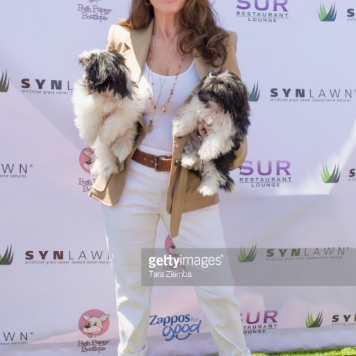 Lisa Vanderpump's Annual 'World Dog Day' Returns to West Hollywood Park