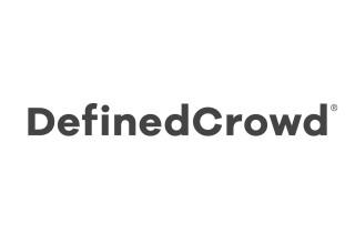 DefinedCrowd Logo grey