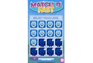 Match It Fast levels