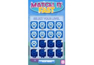 Match It Fast levels