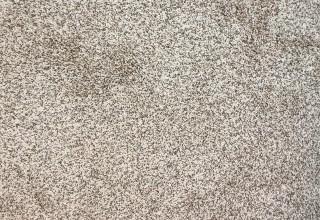 Carpet stores Houston