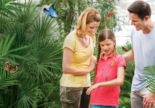 Butterfly Wonderland Becomes the First Butterfly Education Facility to Earn Certified Autism Center™ Designation