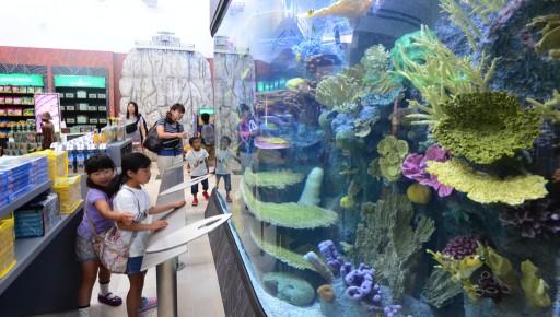 Guam International Airport Aquarium