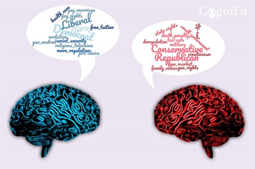 Left Wing or Right Wing: What Cognitive Qualities to Look for in a Policymaker?