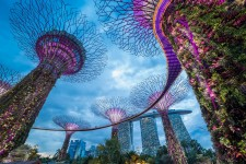 Wings Travel Management expands in Singapore