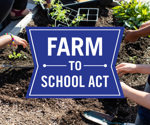 Farm to School Act Will Support Child Nutrition Programs and Local Food Systems in Rebuilding From Pandemic