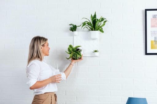 Innova Technologies is Launching a Wall Organiser and a Vertical Garden