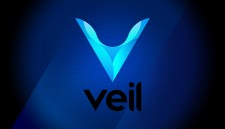 Veil Mainnet launch delayed to Jan 1, 2019 to address security vulnerability found in commonly used open source code