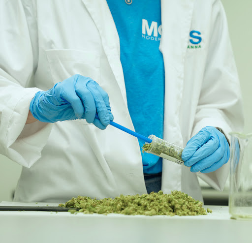 Modern Canna Announces Expansion Into Gainesville, FL