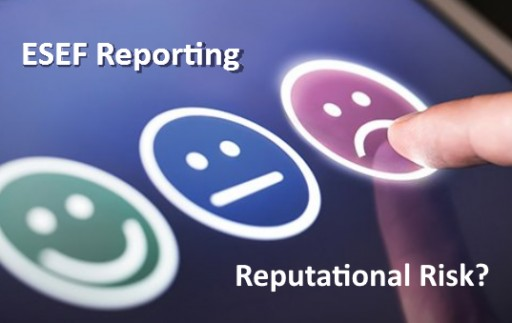 Validation and Data Quality at the Forefront of Listed Companies' Concerns for ESEF Reporting