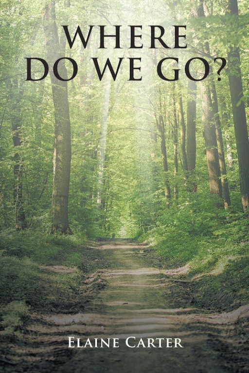 Elaine Carter's New Book 'Where Do We Go?' Unravels a Thrilling Pursuit for a Brighter and Better Future