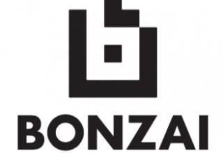 Bonzai - The stress-free intranet.