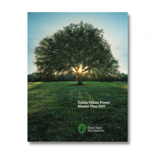 Texas Trees Foundation Celebrates the Adoption of the First Dallas Urban Forest Master Plan