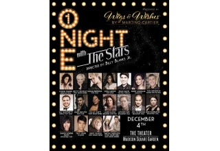 """ONE NIGHT WITH THE STARS"" WIGS & WISHES CHARITY EVENT DECEMBER 4TH"