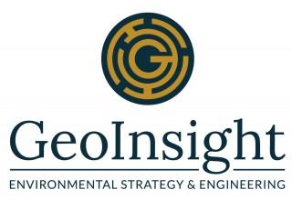 GeoInsight