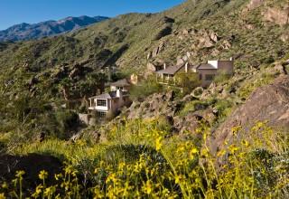 Hillside Estate View
