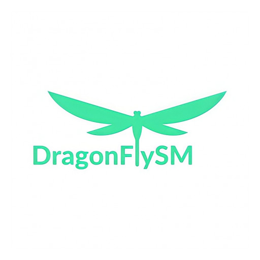 DragonFlySM: Simplifying Workflow for Every Professional