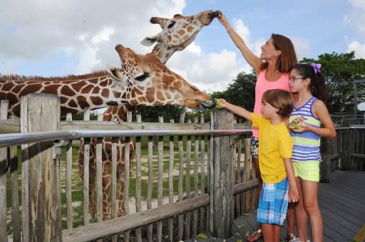 Zoo Miami Earns Certified Autism Center Designation