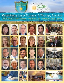 Veterinary Laser Dentistry, Surgery and Therapy Session at the 2019 ALSC Symposium