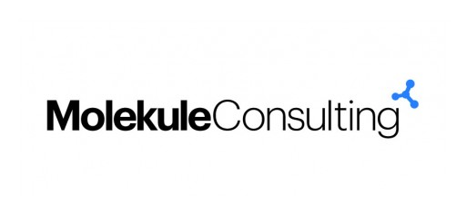 Molekule Consulting LLC Announces the Appointment of Dr. Daniel Pascheles to the Position of Chief Executive Officer