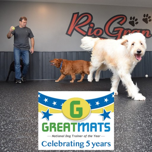 Greatmats Accepting Nominations for 5th Annual National Dog Trainer of the Year Award